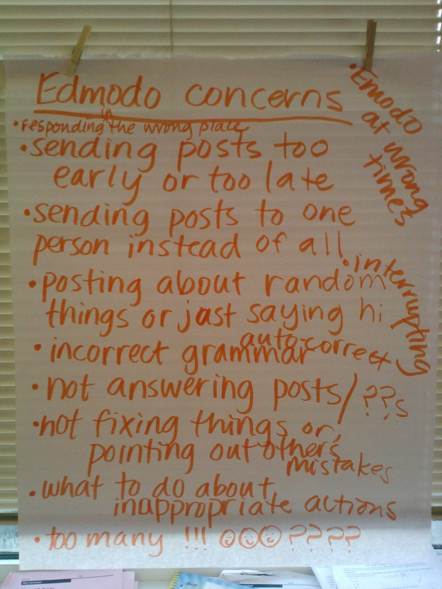 Edmodo concerns brainstorming list