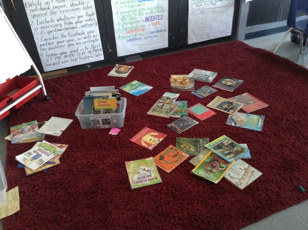 I put many options of science books (animals, weather, force and motion, etc.) out on the rug and we dug in!