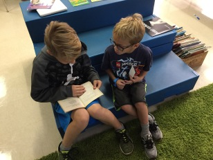 Zander and his brother shared a chapter book!