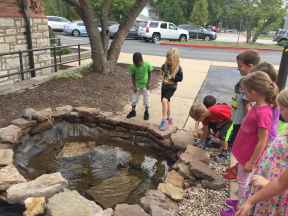 The pond has been rebuilt and has a really cool turtle fountain!